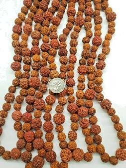 """Rudraksha  Beads For Malas 10-14MM  Lot of 5 - 24"""" Strands U"""